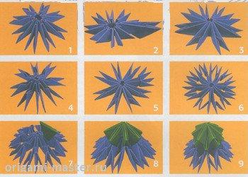 оригами василёк схема